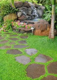 Backyard Ground Cover Options Garden Path Stepping Stone Ground Cover Corsican Mint
