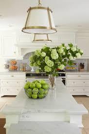 marmorplatte küche marmor platte grüne äpfel moderne küchen marmor