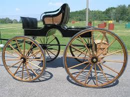 bianchi carrozze bianchi american buggy cavalli e carrozze che passione
