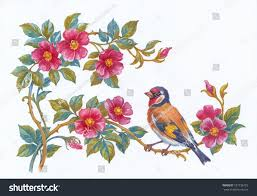 Flower And Bird - watercolor painting flowers roses bird stock illustration