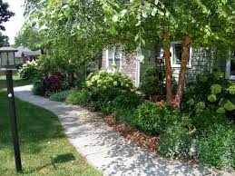 garden ideas with hydrangeas native garden design