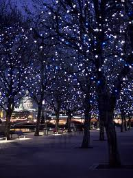 tree lighting landscape lighting pinterest lights