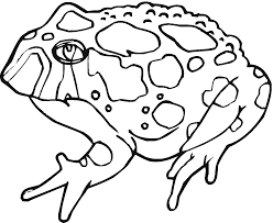 frog coloring pages dltk within dltks christmas eson me