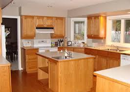 kitchen kitchen cupboards ideas amazing kitchen cupboards