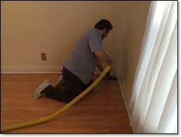 hardwood floor cleaning carpet cleaning in westchester oak park