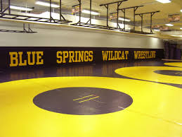 wall padding gallery resilite sports products inc