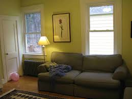 paint colors for living rooms with white trim home design