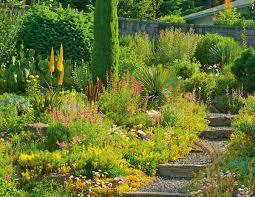 the quintessential portland gardener portland monthly
