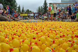 the great rubber duck races