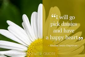 flower quote i will go pick daisies floating petals
