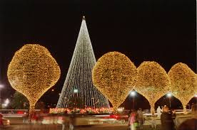 Outside Lighted Christmas Decorations - outdoor lighted trees christmas christmas lights decoration
