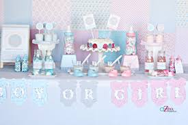 baby shower gender reveal baby shower gender reveal party ideas savvy sassy