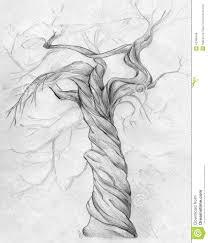twisted tree stock illustration image 42388488