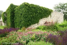 toronto botanical garden janet davis explores colour