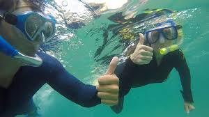 snorkelling alma bay magnetic island youtube