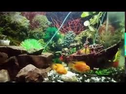 shipwreck fish tank decoration