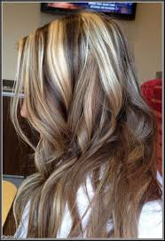 highlights and lowlights for light brown hair stunning id blonde highlights with black lowlights picture for