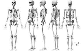 halloween skeleton template look scary with halloween skeleton costume newsread in