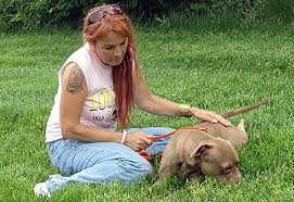 Seeking Pitbull Episode Pit Bulls And Parolees Tv Show News Episodes And
