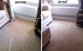 Rug Cleaners Liverpool Carpet Cleaning In Liverpool Servicemaster Clean