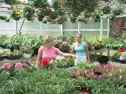 flower gardens for beginners gardening from mywebpal
