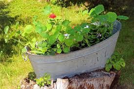 Bathtub Planter Outdoor Living Small Outdoor Backkyard Garden Decorating Ideas