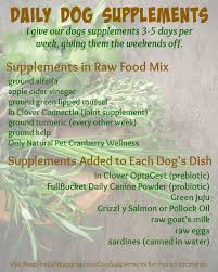 pin by ana nobles on dogs u0026 puppies pinterest raw food diet