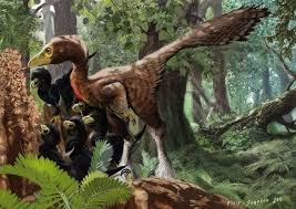 see what you would look like with different color hair if the dinosaurs had never gone extinct what do you think the
