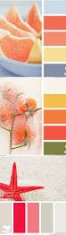 shades of orange paint names clanagnew decoration