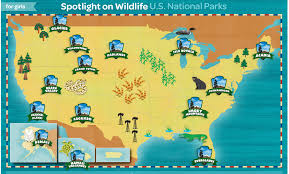 map us national parks scouts spotlight on wildlife u s national parks