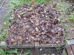 Construire Jardin D Hiver Votre Potager En Carré Pour L U0027hiver