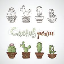 set of vector cactus icons on white background stock vector