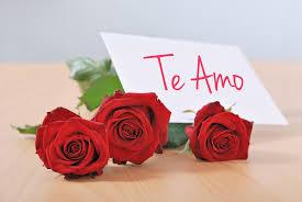 Imagenes Para Enamorar Con Flores | flores para enamorar