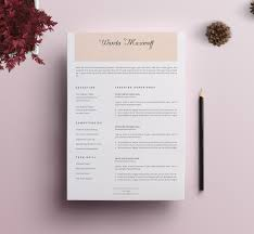 Professional Resume Cv Template Professional Resume Cv Template 9 Resume Templates Creative