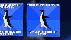 Socially Awkward Penguin Meme Generator - meme penguin haters gonna penguin memes pics bajiroo socially