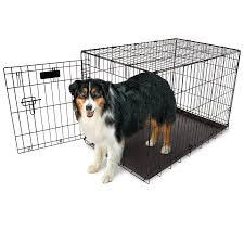 australian shepherd kennel size amazon com aspen pet home training wire crate black 34 6