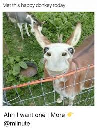 25 best memes about happy donkey happy donkey memes