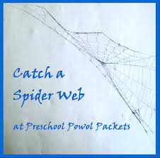 catch a spider web preschool powol packets