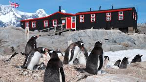 penguin post office about nature pbs