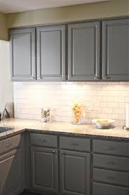 Dm Kitchen Design Nightmare by White And Gray Kitchen Cabinets Detrit Us