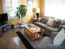 fancy relaxing living room decorating ideas with additional