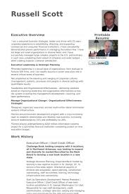 Sample Resume Executive by Credit Administration Sample Resume Haadyaooverbayresort Com