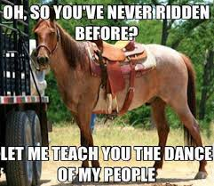 Horse Riding Meme - 27 most funny horse images