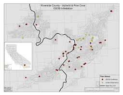 Map Of Riverside County Distribution Goldspotted Oak Borer