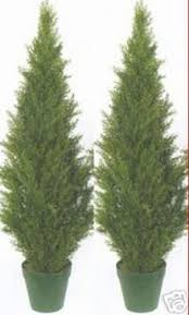 two 4 foot artificial topiary cedar trees potted