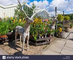 two size wooden deer garden ornaments in the garden centre at