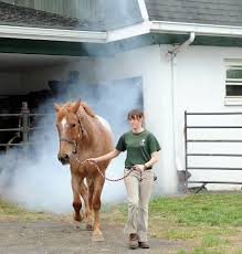 Barn Fires Take Time To Learn About Barn Fire Safety And Prevention Nj Com