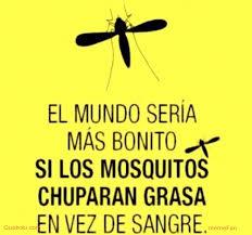 Mosquito Meme - memes frases imágenes de mosquito en quebolu
