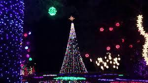 light sets annual tree lighting lottery