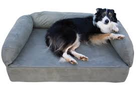 Foam Dog Bed The Benefits Of Dog Beds For You And Your Dog Inspirationseek Com